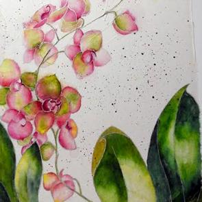 NANCY LARKIN - 'Impatient to Bloom'
